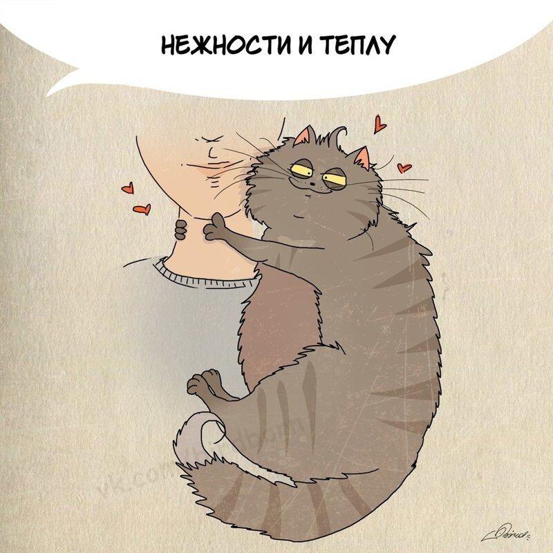 10 полезных вещей, которым людям стоит поучиться у котов забавно, иллюстрация, кот, кошки, рисунок, художник, юмор