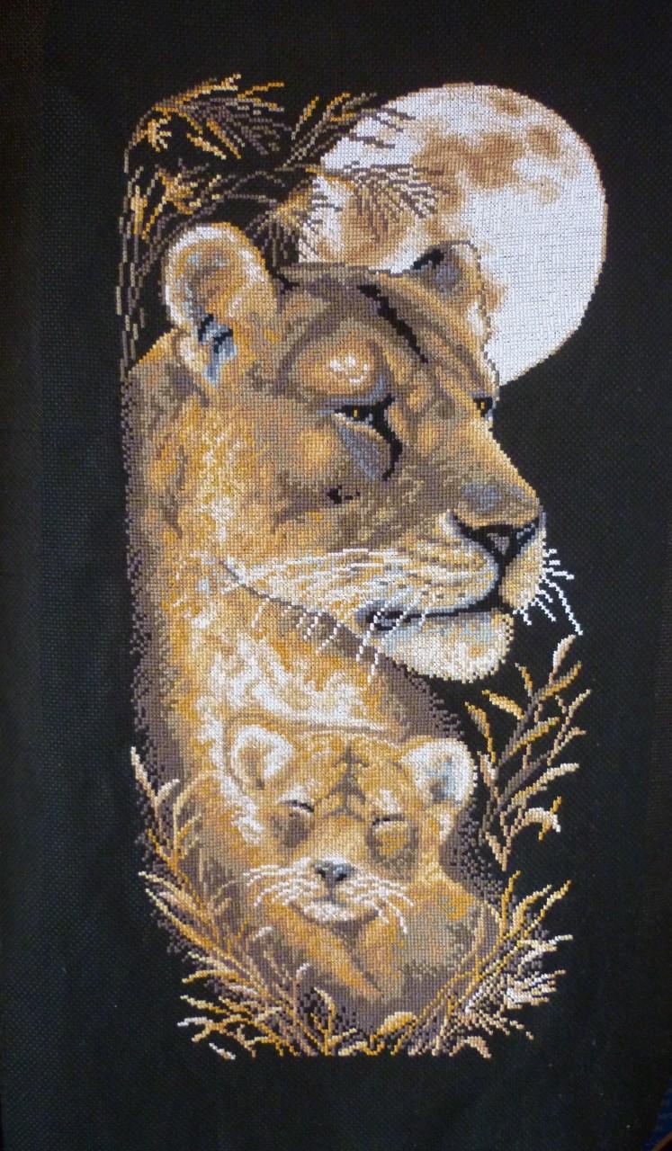 Львица...
