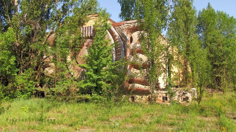Природа захватывает Чернобыль