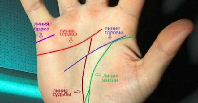 Ваши руки говорят: то, как расположена Линия Сердца, определяет все в вашей жизни