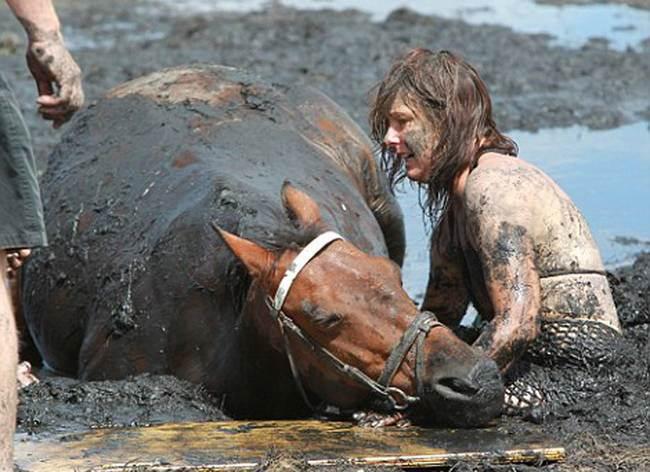Преданность до последнего вздоха: девушка не покидала коня, попавшего в трясину