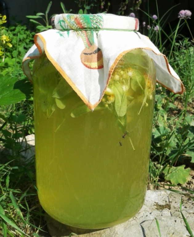 Ароматный липовый лимонад — …