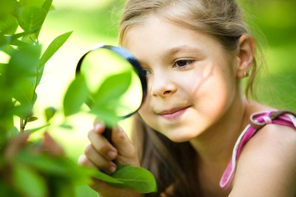 Что такое регуляторы роста, и нужны ли они растениям