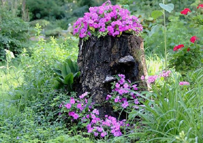 Оригинальный садовый декор: 25 старых пней, превращённых в яркие цветники