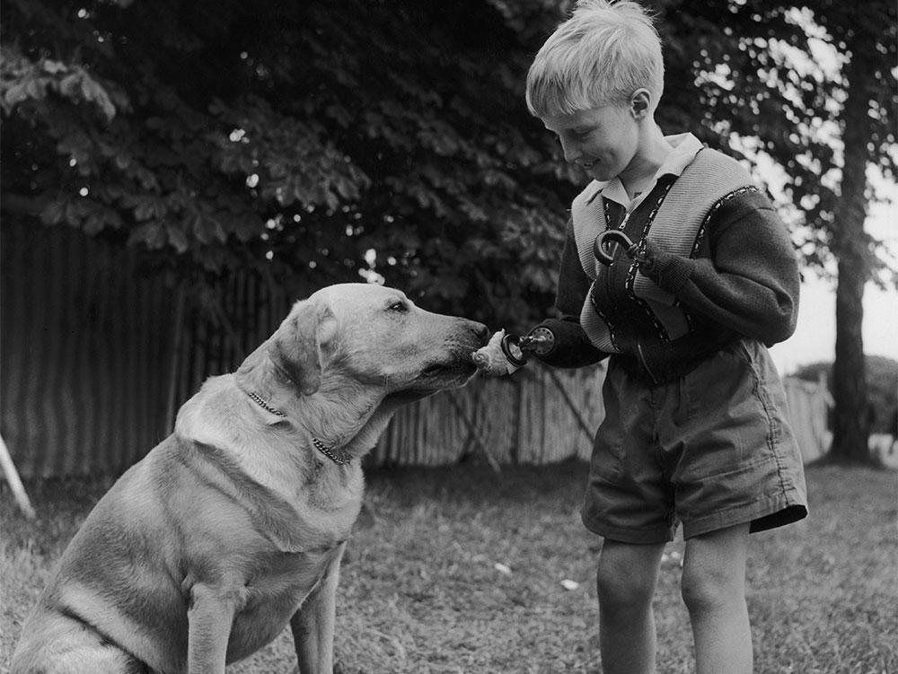Талидомидовая трагедия 60 лет назад. Ошибка фармацевтов сделала инвалидами тысячи детей