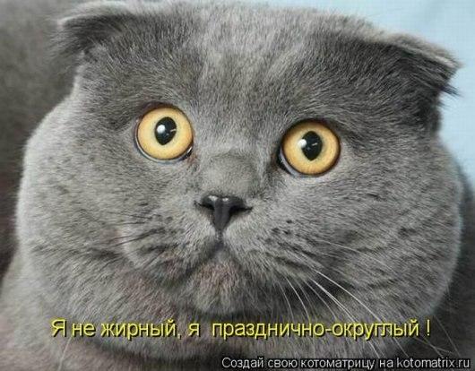 Виноваты праздники...)))