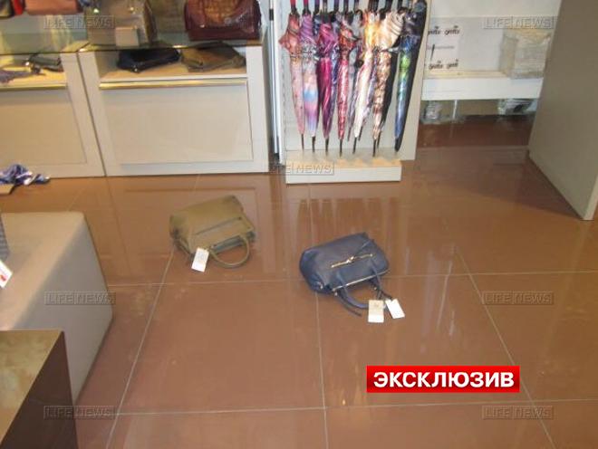 кот разгромил бутик в Шереметьево