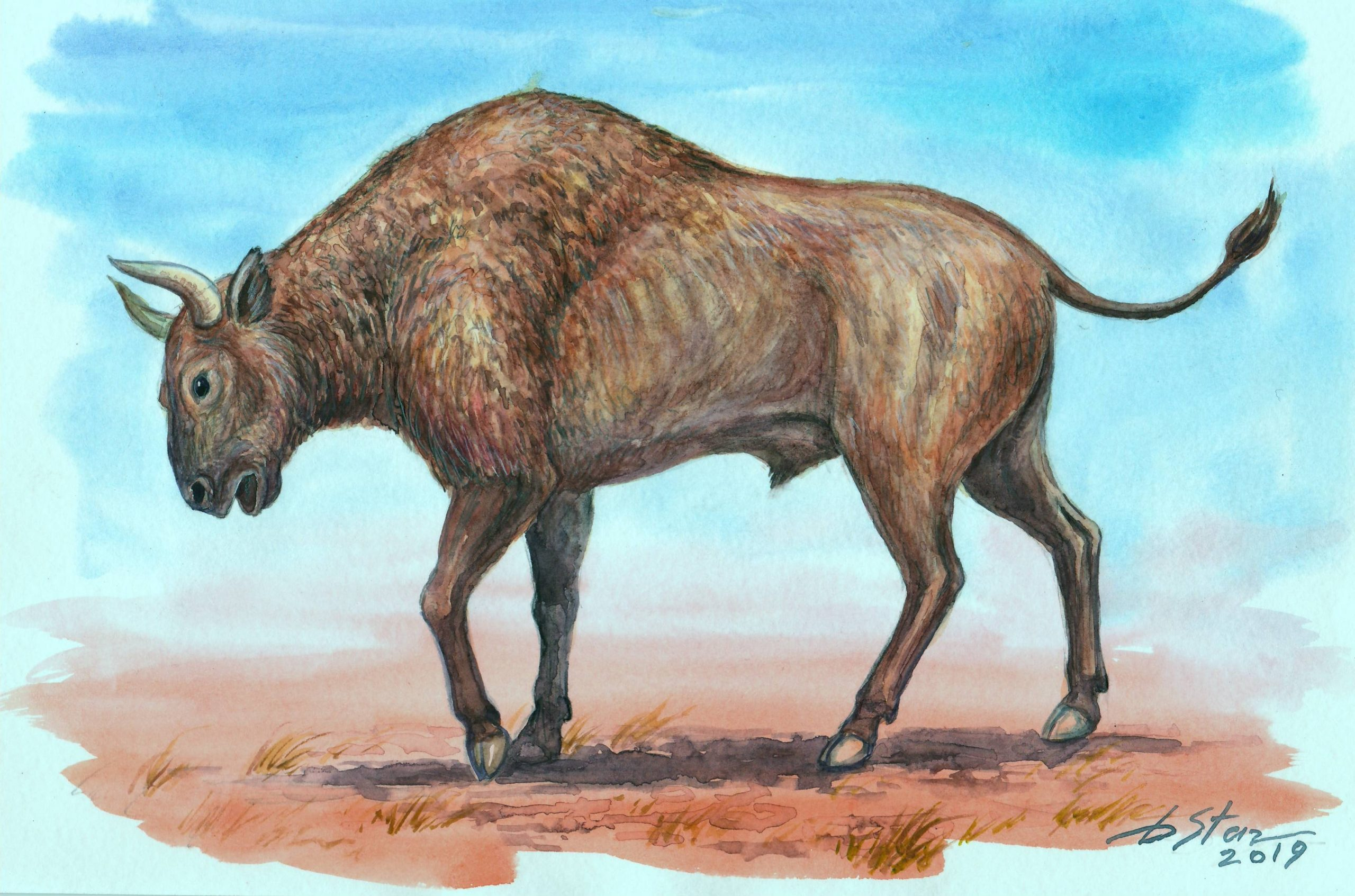 следам днк, картинки с древними животными куркума популярная восточная