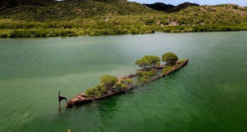 Заброшенный 100-летний корабль в Австралии поглотила природа