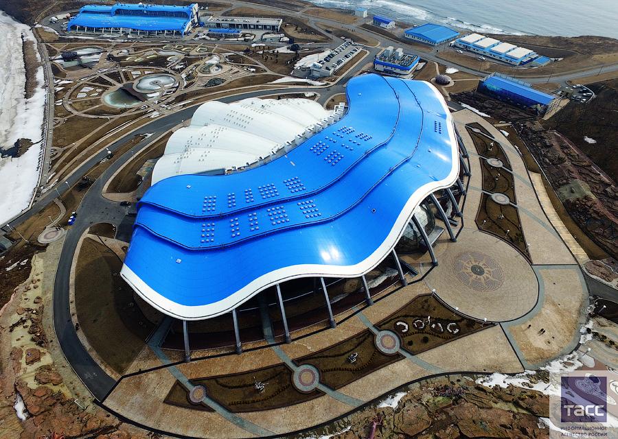Картинки океанариума во владивостоке