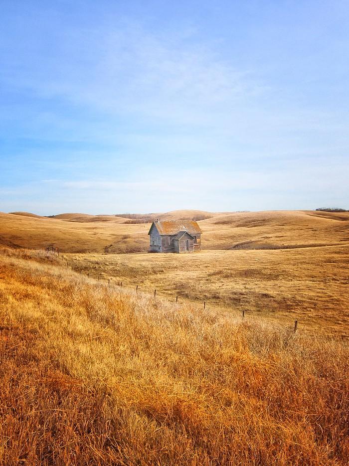 18. Дом в золотистом поле. Альберта. Канада.