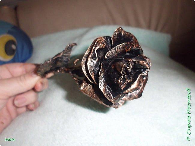 Мастер-класс Бумагопластика Кованая роза из туалетной бумаги Бумага Диски ватные Клей Краска Проволока фото 1