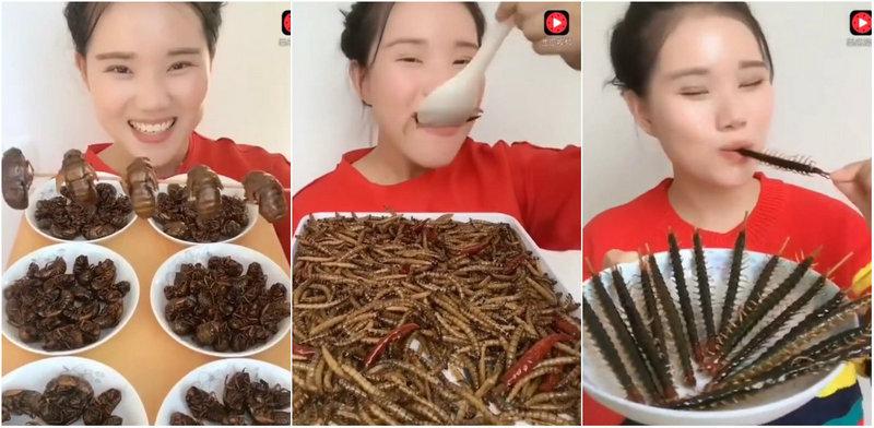 Девушка из Китая жрет насекомых как семечки