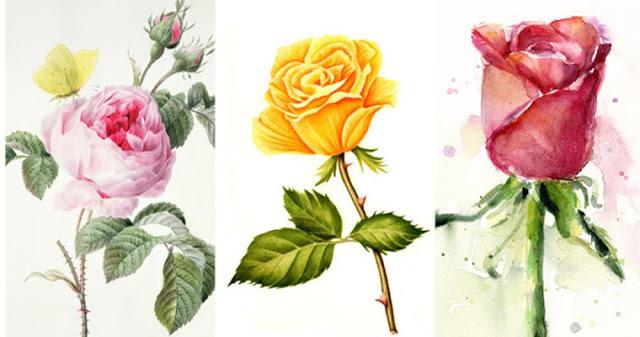Выберите розу, которая нравится вам больше всего!