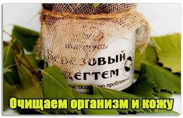 очищаем организм от паразитов скачать