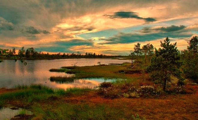 В Сибири находится самое большое болото мира. Его площадь равна небольшому морю