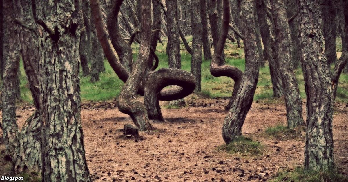 9 Ñвлений, которые наука объÑÑнить до Ñих пор не может