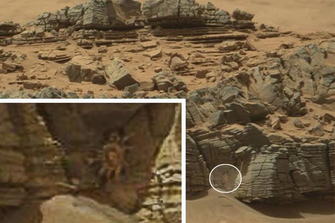 NASA: Краба-гиганта с 10 ногами разглядели пользователи интернета на фотографии с Марса
