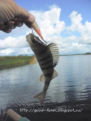 Рыбалка в начале сентября