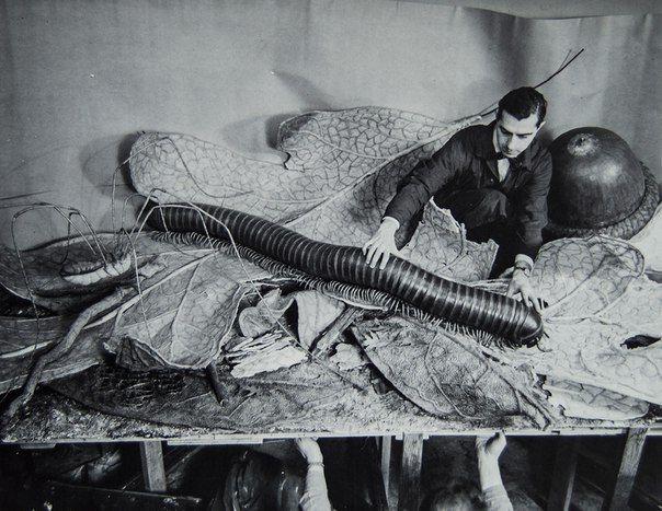 Установка модели для выставки в американском музее музей естественной истории, 1958 год история, картинки, фото