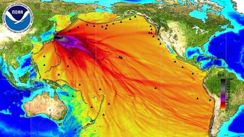 «Фукусима» убивает Тихий океан, Запад молчит. Музыкальная колонка Дмитрия Борисенко