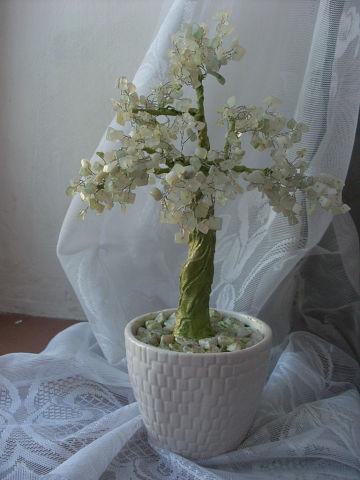 """Бансай""""Невеста"""""""