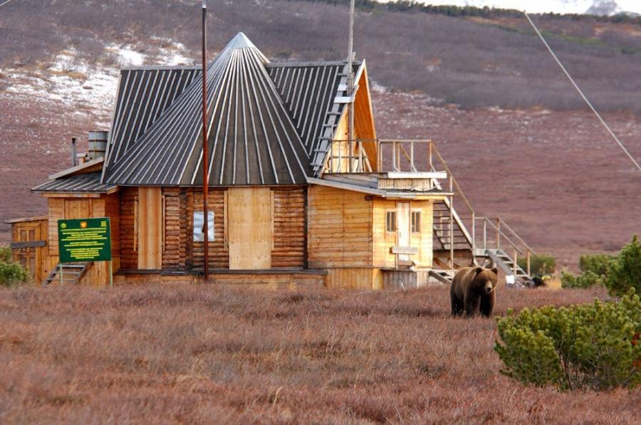 Кроноцкий заповедник на Камчатке заповедники, камчатка