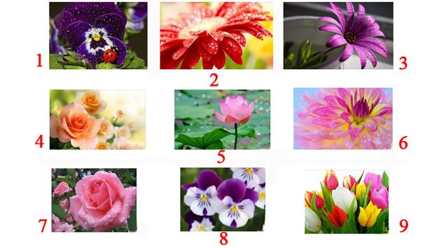 Какой цветок выберите, такой у вас и характер
