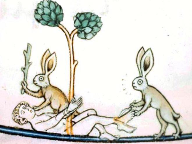 20 кроликов-убийц из средневековых книг: почему именно этих зверьков рисовали такими злобными