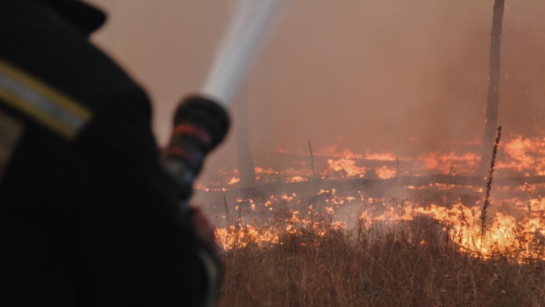 Жителей челябинского поселка эвакуируют из-за угрозы распространения пожара Происшествия