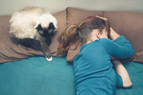 Домашние животные помогают людям крепче спать