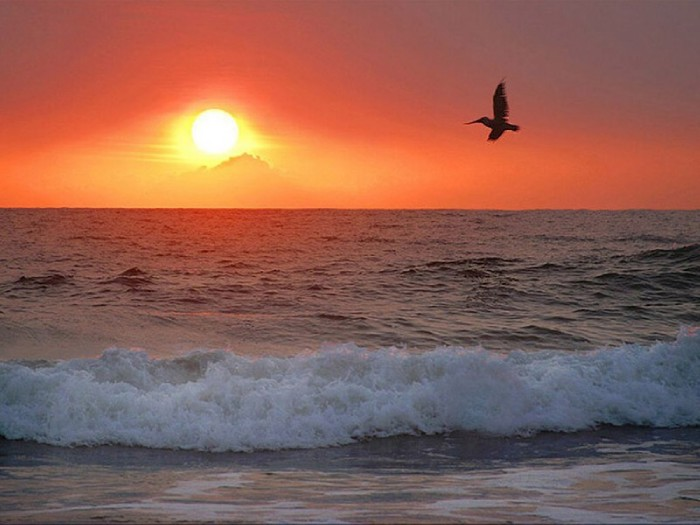 О красивом... Морской прибой и прекрасная мелодия
