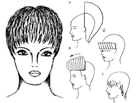 стрижка женская короткая схемы в картинках южного урала