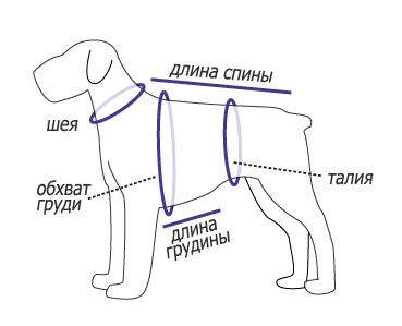 мерки с собаки