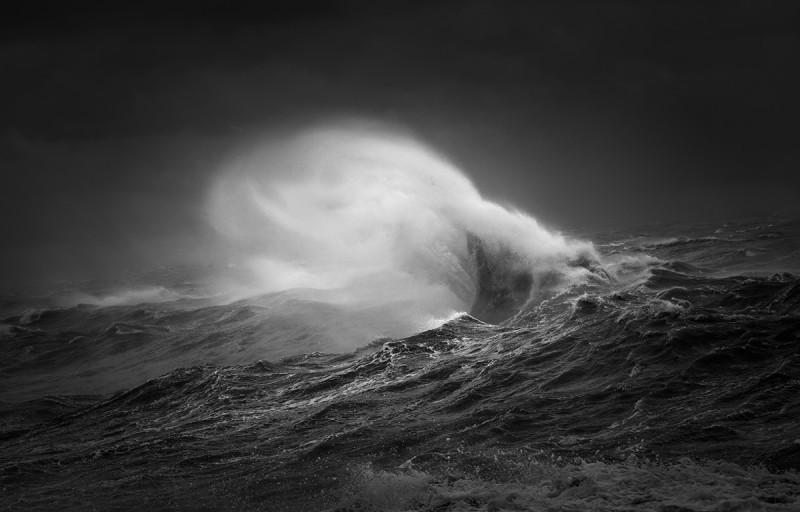 Лучшие черно-белые фотографии c конкурса Black+White Photographer of the Year 2018