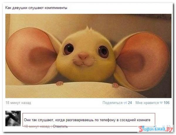 Убойная подборочка комментариев из соц.сетей от народных приколистов