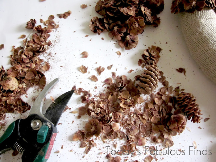 making pine cone flowers_5961 (700x525, 177Kb)