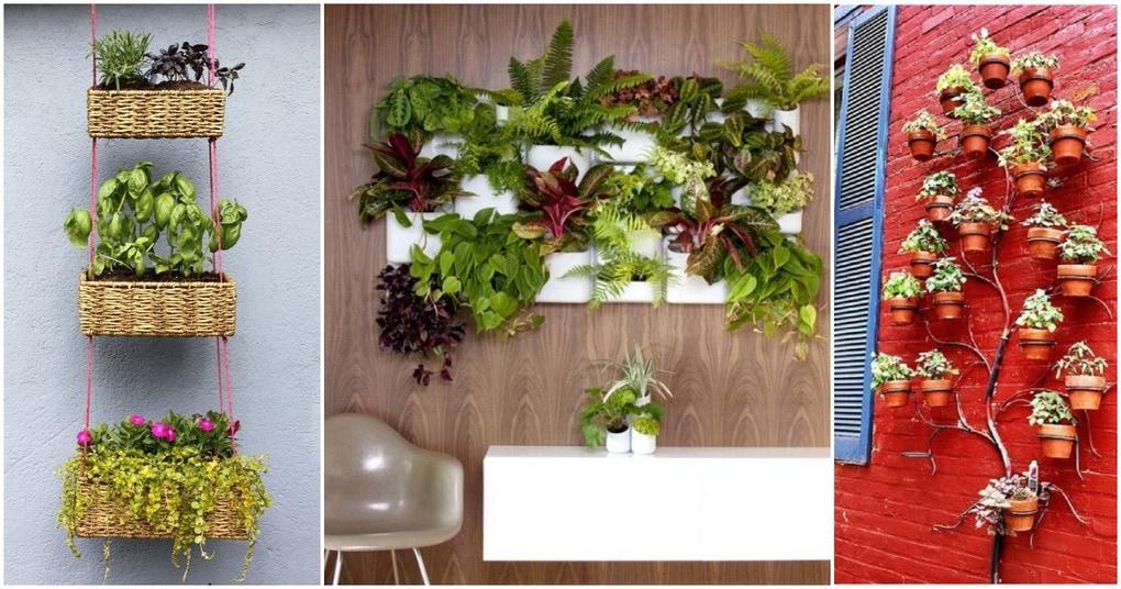 Много радости и мало места: лучшие идеи организации вертикального сада