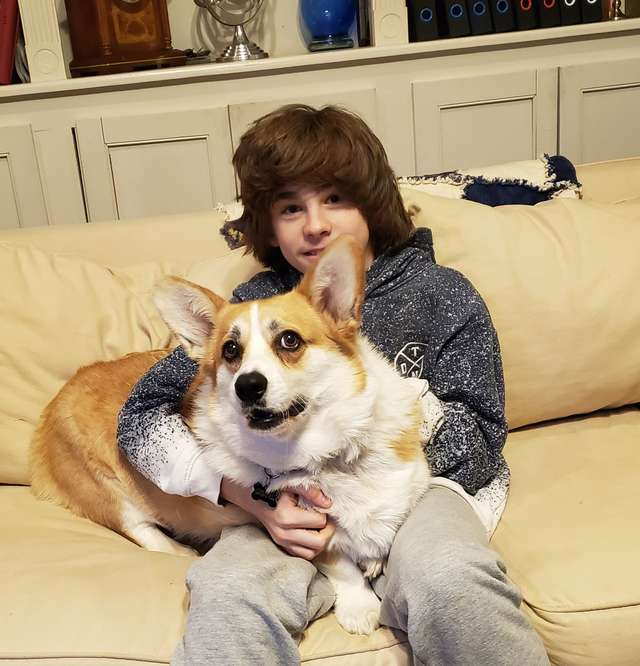 Как только мальчик приходит домой, его любимый пёс спешит снять с него носки. Это длится уже не один год истории из жизни