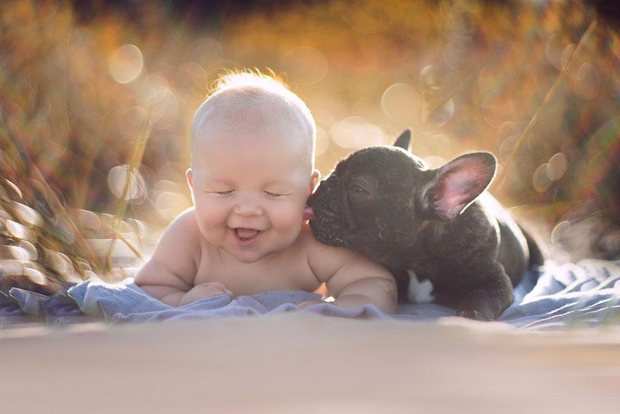 Ребенок и бульдог, родившиес…