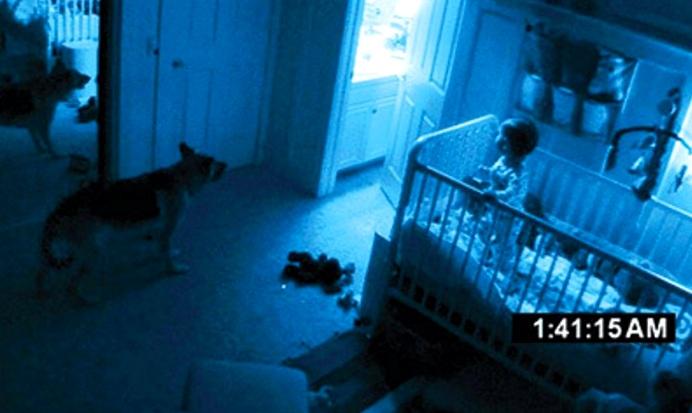7 видео и фото, на которых домашние животные видят невидимые человеку вещи