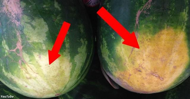 Несколько секретов, которые помогут вам выбрать самый сладкий арбуз