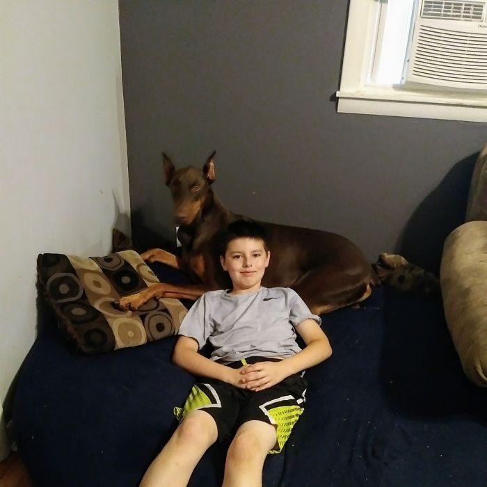 Мальчик, который продал свои игрушки, чтобы заплатить за лечение собаки