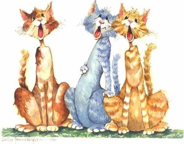 Картинки, поющие коты картинки прикольные