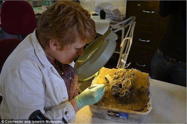 Клад был вынут из земли целиком вместе с грунтом, дабы не повредить его целостность и отправлен для исследования в лабораторию при музее Колчестера и Ипсвича. Клады, археология, интересно, история, сокровища