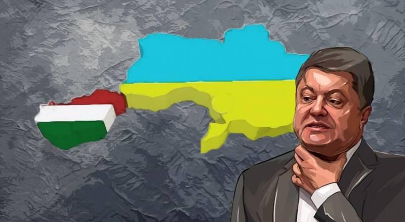 Задачка для посла США: помирить украинцев с венграми