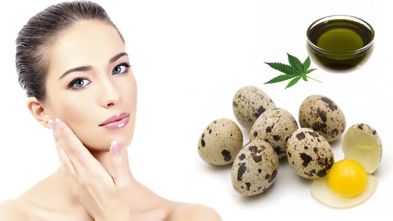Маски и крема из куриных и перепелиных яиц красота,уход за кожей