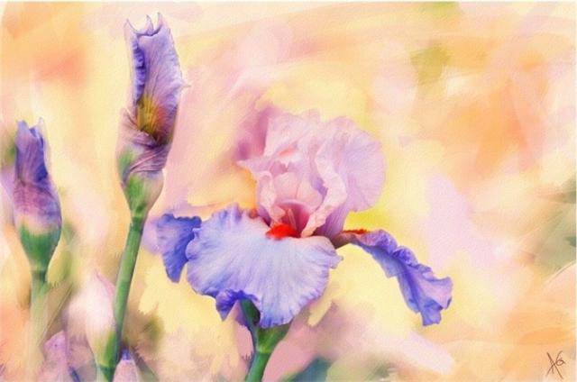 Alberto_Guillen_Flower_Paintings_1 (670x444, 219Kb)