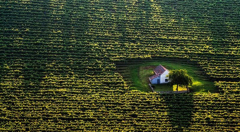 17. Домик в поле. Венгрия.