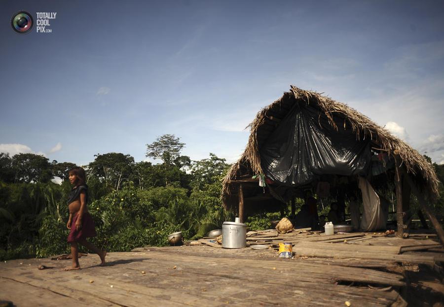Выживание на Амазонке